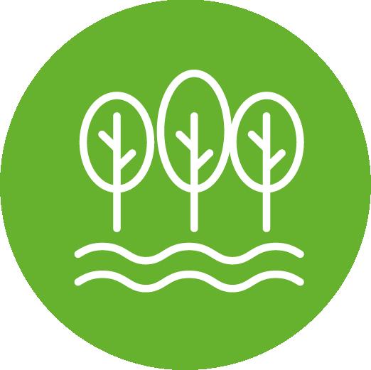 Environnement, nature et réseaux © Apur