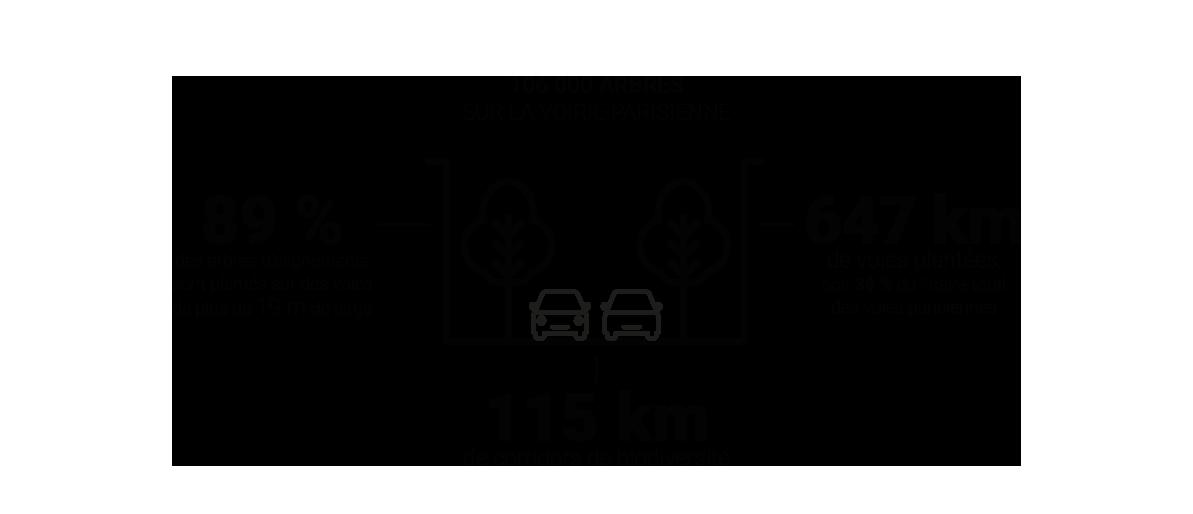 Infographie - Espaces publics à végétaliser à Paris © Apur