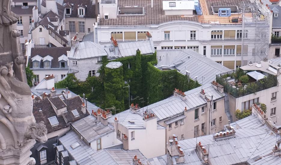 Vue aérienne d'une cour végétalisée, rue Chanoinesse dans le 4e arrondissement de Paris © Apur