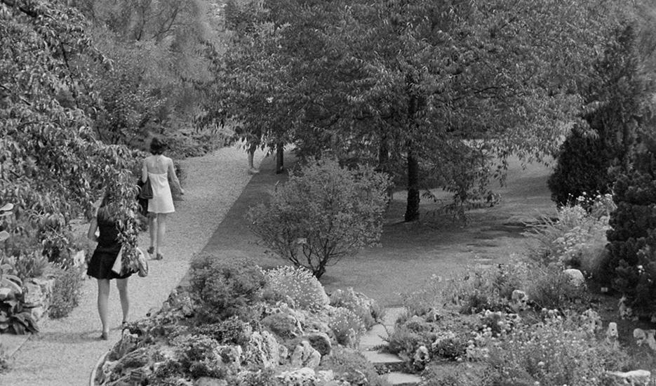 Jardin des plantes, Paris 5e arr. © Apur