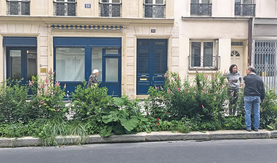 Végétalisation de la bande de stationnement Rue de Bruxelles (Paris 9e) © Apur