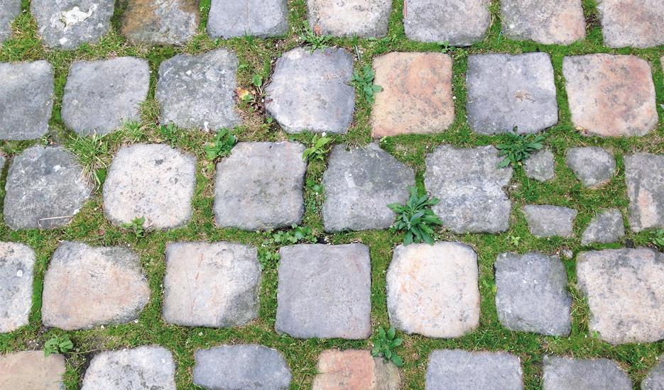 Vue sur un exemple de revêtement de sol à Paris © Apur