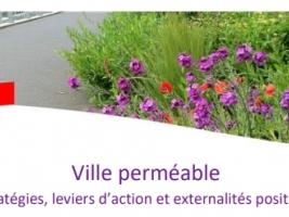 Conférence « Ville perméable » © Graie