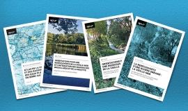 Vielle-Mer publications © Apur