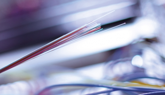 Optic fibre © istockphoto.com/JarekJoepera