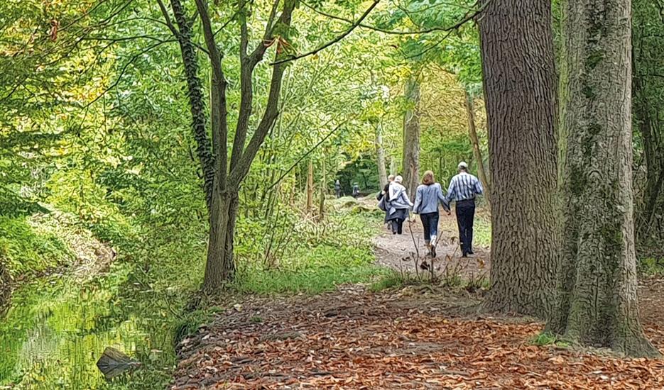 People walking in the Bois de Vincennes woods © Apur – JC Bonijol